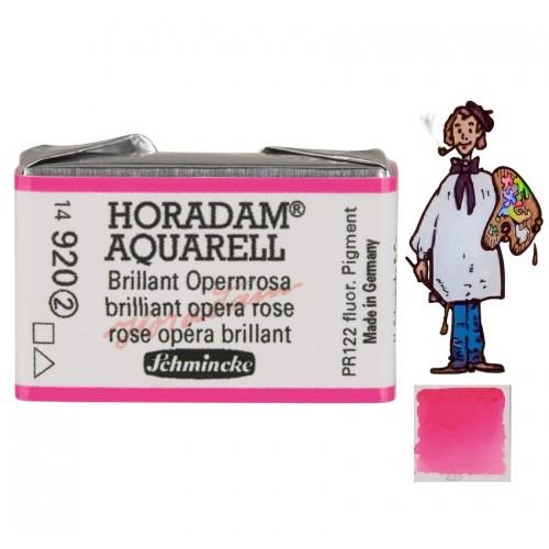 ACUARELA Horadam Godet  FLOR DE ROSA ÓPERA BRILLANTE  S2.- 520