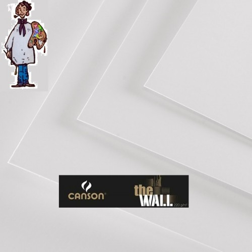 PAPEL  THE WALL CANSON 220 G- 5 hojas 50x70cm