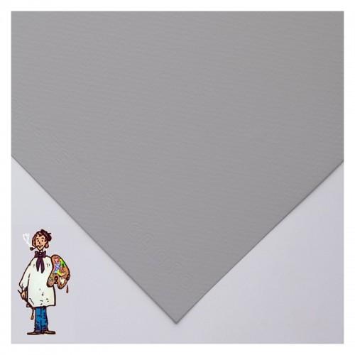 Mi–Teintes CANSON PAQ 10 HOJAS 65x50 – 160gr GRIS FRANELA